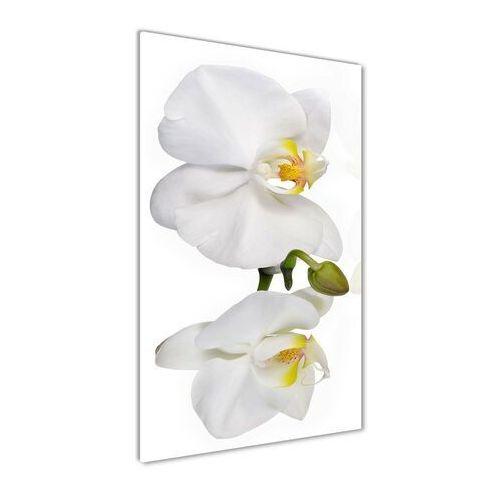 Foto obraz akryl do salonu biała orchidea marki Wallmuralia.pl