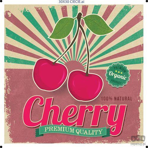Obraz cherry ptd076t1 marki Consalnet
