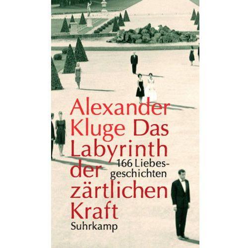 Das Labyrinth der zärtlichen Kraft, m. DVD (9783518421253)