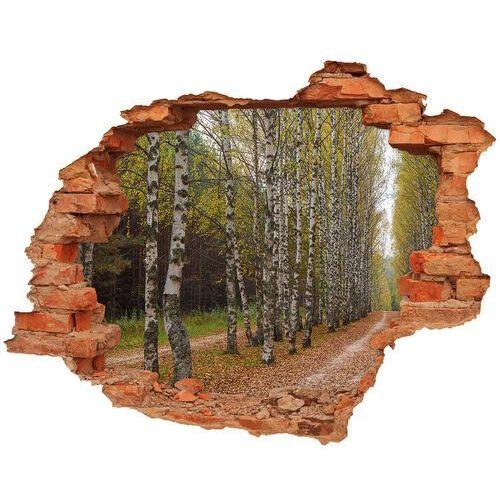 Wallmuralia.pl Dziura 3d w ścianie naklejka aleja brzóz