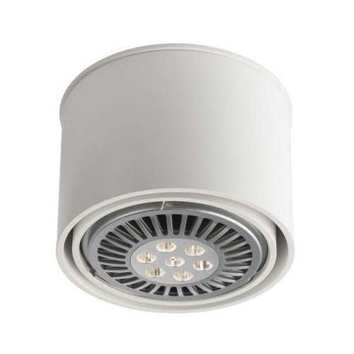 Shilo Spot lampa sufitowa miki 1117/gu10/bi natynkowa oprawa downlight biały