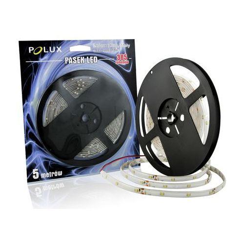 Taśma LED 8W POLUX 5 metrów biała/zimna barwa światła IP44, kolor biały