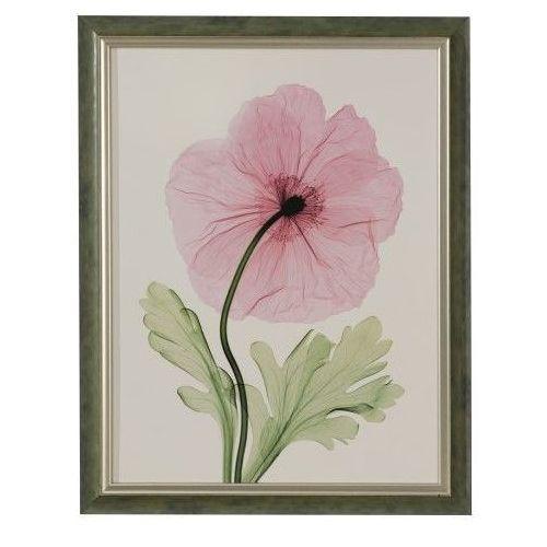 Dekoria obraz pink poppy 46x41, 46 × 41