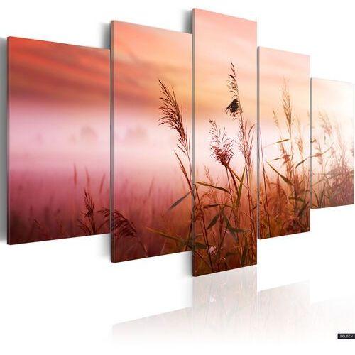 Selsey obraz - łąka witająca nowy dzień 200x100 cm (5902622536002)