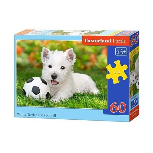 Castor Puzzle 60 elementów white terrier and football (5904438006823)