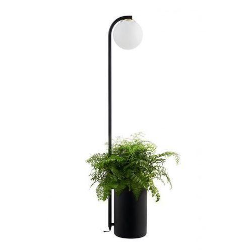 Lampa stołowa (doniczka) botanica deco xl 40851105 - marki Kaspa