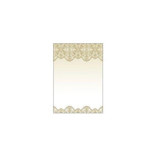 Galeria papieru Arkusze barwne koronka 100g 50 szt new