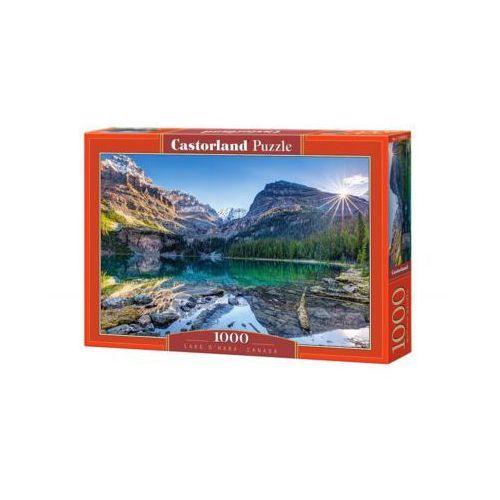 Castor 1000 elementów jezioro o'hara, kanada