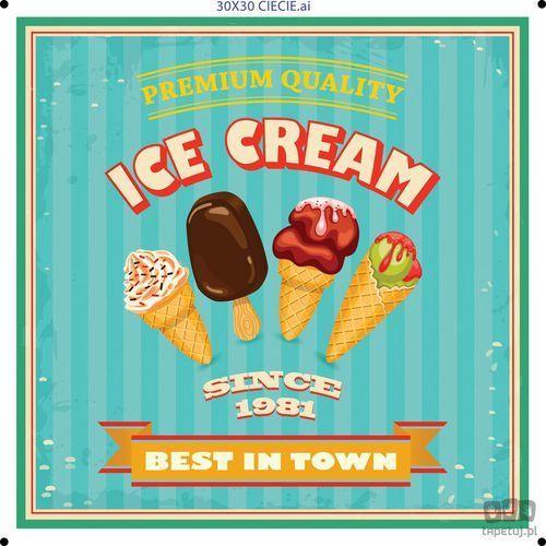 Obraz ice cream best in town ptd079t1 marki Consalnet