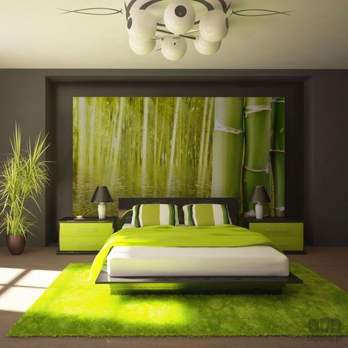 Fototapeta egzotyczny klimat - bambus 100403-170 marki Murando