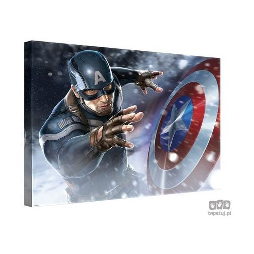 Obraz MARVEL Capitan America: The Winter Soldier PPD335, PPD335