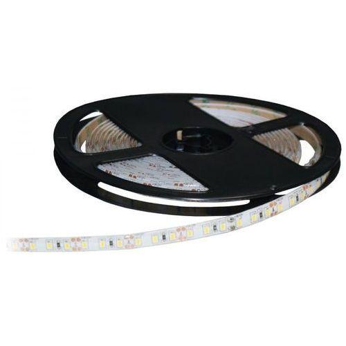 Taśma LED INQ S2835x120 5m DARMOWY TRANSPORT