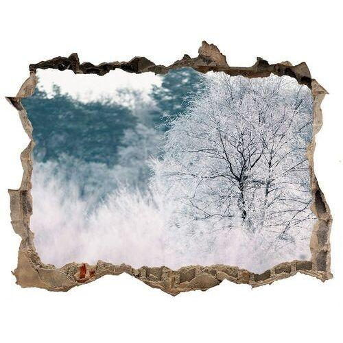 Dziura 3d w ścianie naklejka Drzewa zimą
