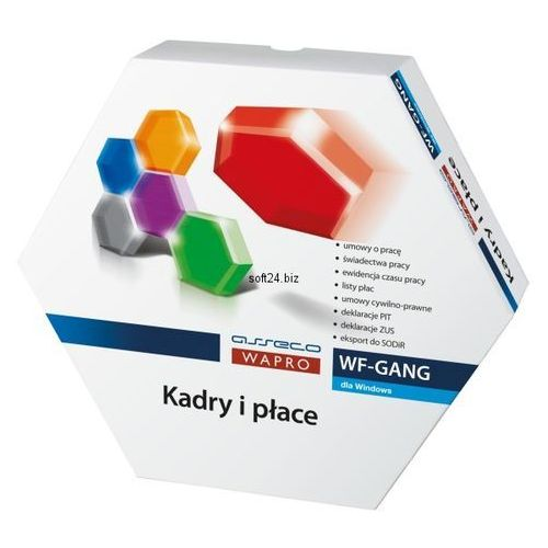 Kadry i płace wf-gang biznes 50 box marki Asseco wapro