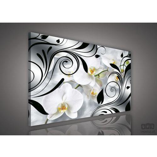 Obraz czarne zdobienia pośród białych storczyków pp1513 marki Consalnet
