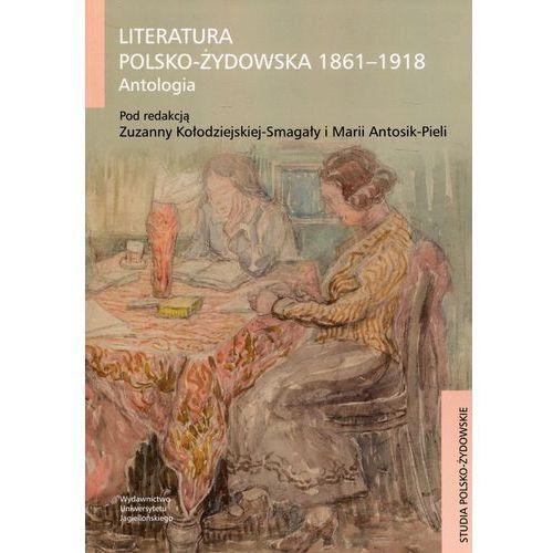 Literatura polsko-żydowska 1861-1918 (9788323343240)