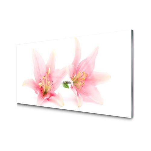 Tuluppl Obraz Akrylowy Kwiaty Roślina Natura I Tniemy Ceny