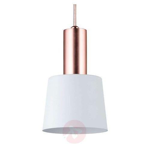 Dekoracyjna lampa wisząca haldar marki Paulmann