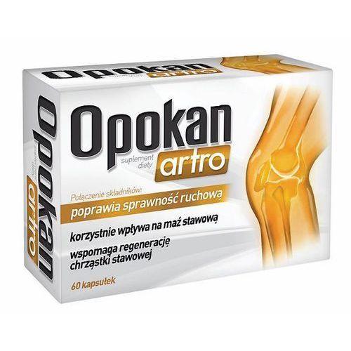 Opokan Artro kaps. - 60 kaps. (5902020845065)