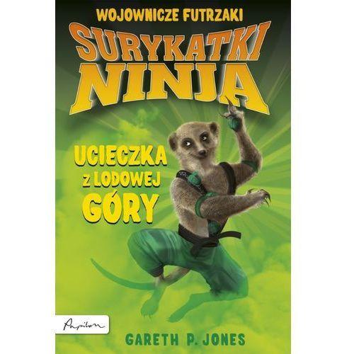 Surykatki Ninja. Ucieczka z Lodowej Góry (112 str.)
