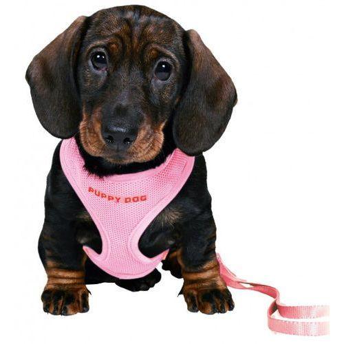 Trixie Zestaw dla szczeniaka szelki i smycz w kolorze różowym nr kat.15567