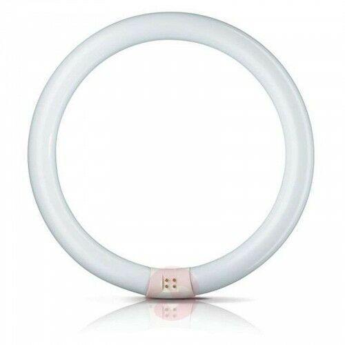 G10q 40W 840 świetlówka Master Circular TL-E, 21572030439