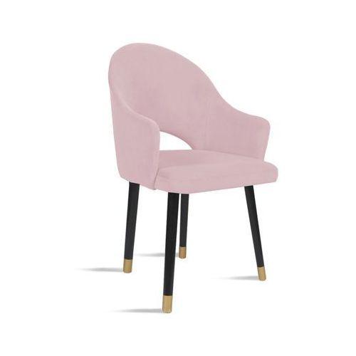 Krzesło bari różowy/ noga czarny gold/ tr19 marki B&d