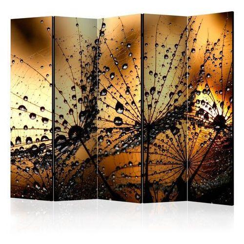 Artgeist Parawan 5-częściowy - dmuchawce w deszczu ii [room dividers]