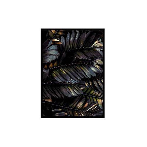 Styler Obraz feather 50 x 70 cm