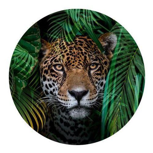 Obraz Glasspik koło Jungle fi 70 cm, GL RN FI70 GR018