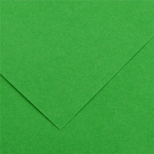 Karton rys. CANSON (I) 70x100 op.25 - j.zielony 29 (3148950404688)