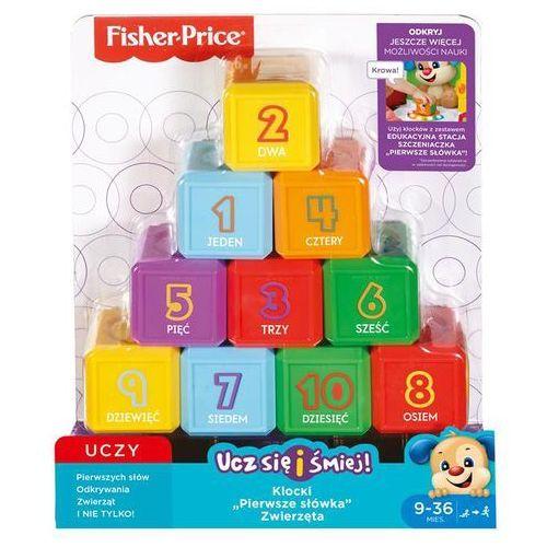 Fisher Price Zestaw 10 klocków pierwsze słówka ast. ll 2 FJG34