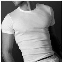 Koszulka męska krótki rękaw marki Atlantic