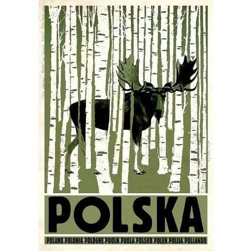 Plakat Polska brzozy łoś - Ryszard Kaja