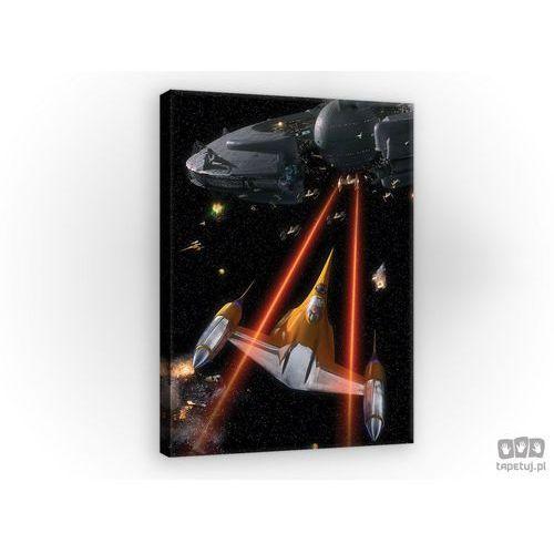 Obraz MROCZNE WIDMO (EPISODE I) - STAR WARS PPD1196, PPD1196