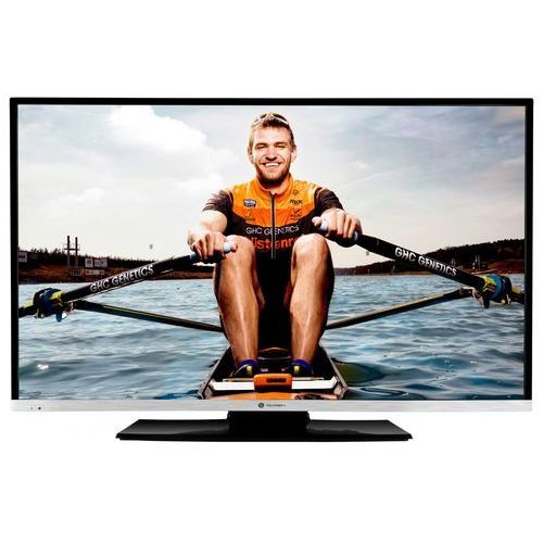 TV LED Gogen TVF 43R384
