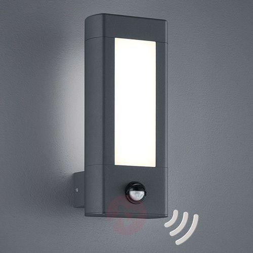 Trio lighting Z czujnikiem ruchu - lampa zewnętrzna led rhine