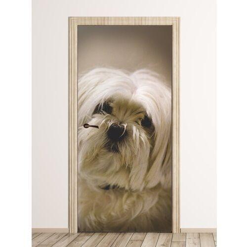 Fototapeta na drzwi biały pies fp 6204 marki Wally - piękno dekoracji