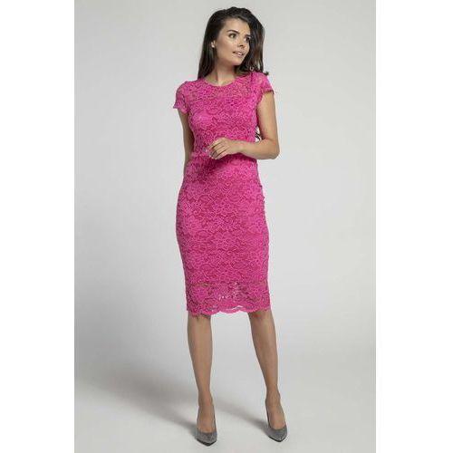 Różowa Koronkowa Ołówkowa Sukienka Midi z Dekoltem V na Plecach, NA574pi