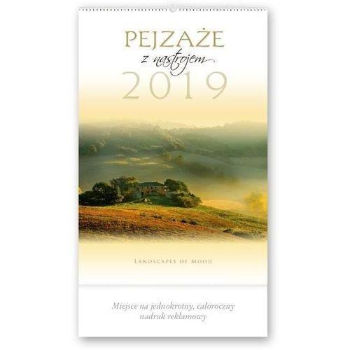 Kalendarz 2019 Reklamowy Pejzaże z nastrojem RW12 (5901397027029)