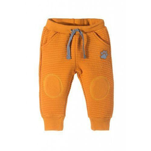 Spodnie niemowlęce dresowe 5M3520