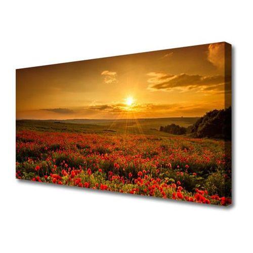 Obraz Canvas Pole Maki Zachód Słońca Łąka
