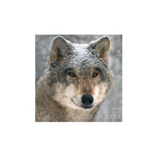 Idąc za wilkiem, Multico