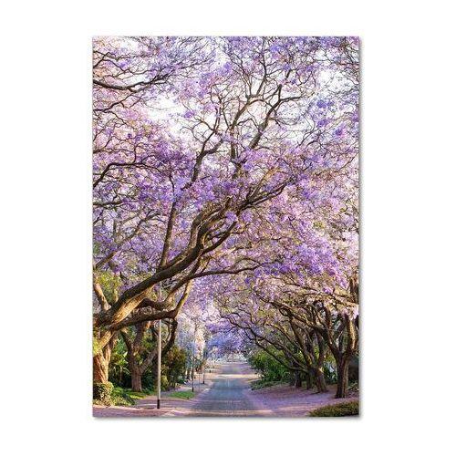 Foto obraz na szkle Ścieżka jakaranda