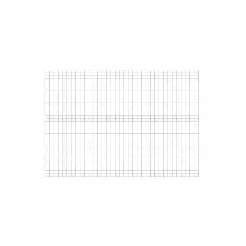 Panel ogrodzeniowy 173 x 250 cm ocynk VERA WIŚNIOWSKI (5908233336406)