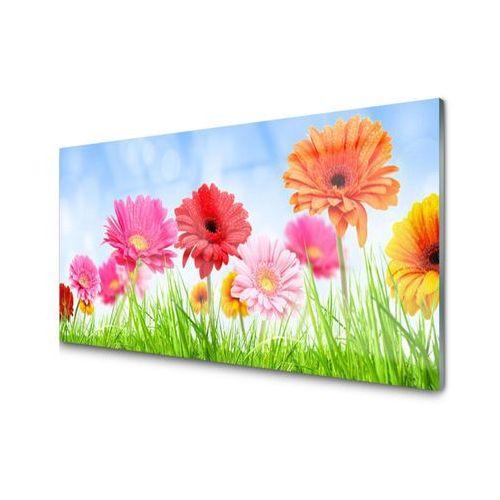 Obraz Akrylowy Kwiaty Trawa Roślina Panicenka