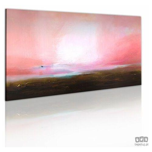 Obraz ręcznie malowany Odległy horyzont