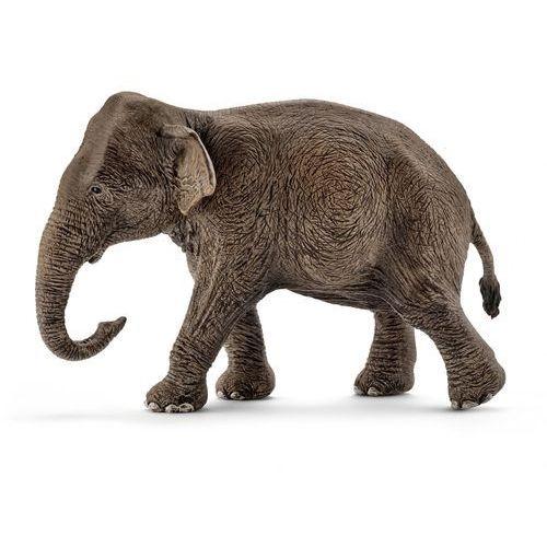 Azjatycka słonica SLH14753 - Schleich