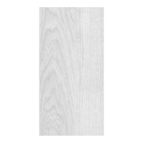 Glazura Ariana 20 x 40 cm jasnoszara 1,52 m2