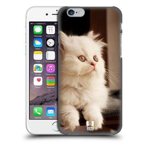 Etui plastikowe na telefon - Popular Cat Breeds ADORABLE WHITE PERSIAN KITTEN z kategorii Futerały i pokrowce do telefonów